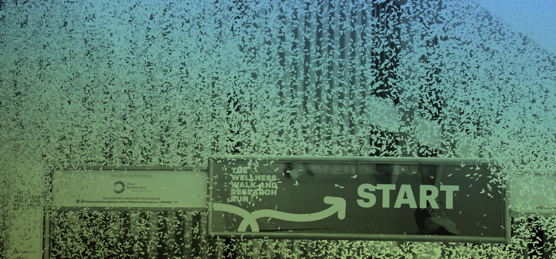startline line
